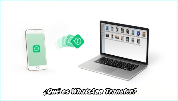 whatsapp-transfer