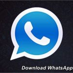 download-whatsapp-plus-holo