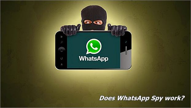 whatsapp spy works