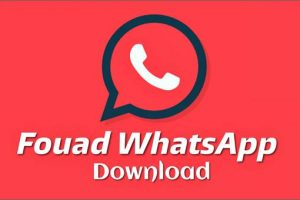 download-fouad-whatsapp