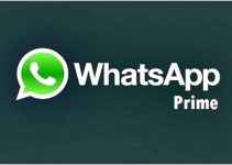 download-whatsapp-prime