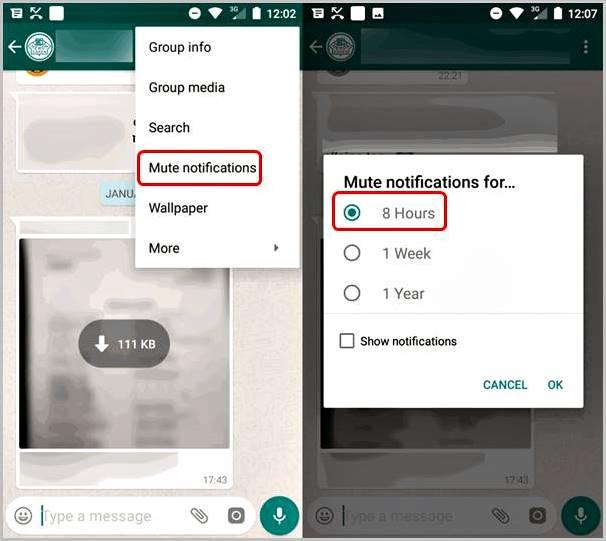 mudo-chat-whatsapp