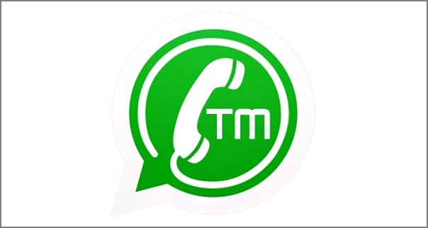 download-tmwhatsapp